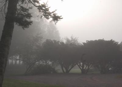 Dimma över Torpa Gård