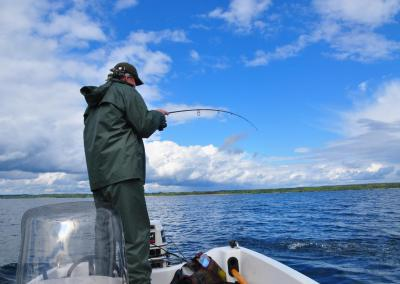 Fiske på Boren