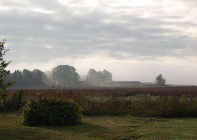 Utsikt över en åker med ett hus i bakgrunden, det är molnigt och lätt dimma.